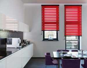 vision red blinds