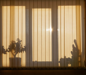Automated blinds with silhouette