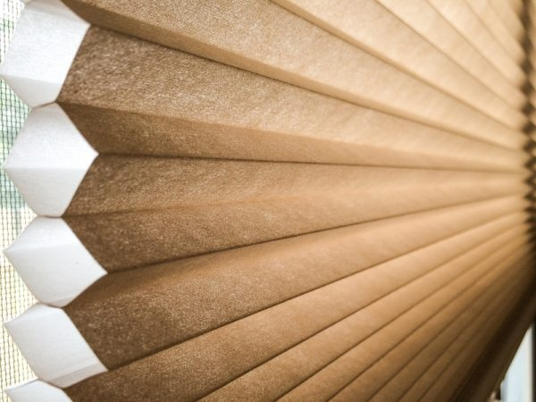 Brown automated blinds